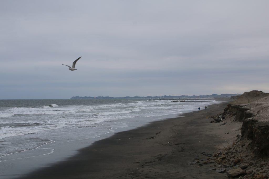 冬の白里海岸
