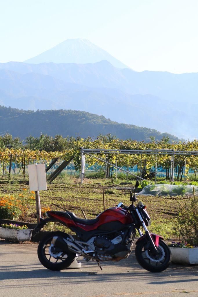 フルーツラインから富士山を望む(2020年10月)