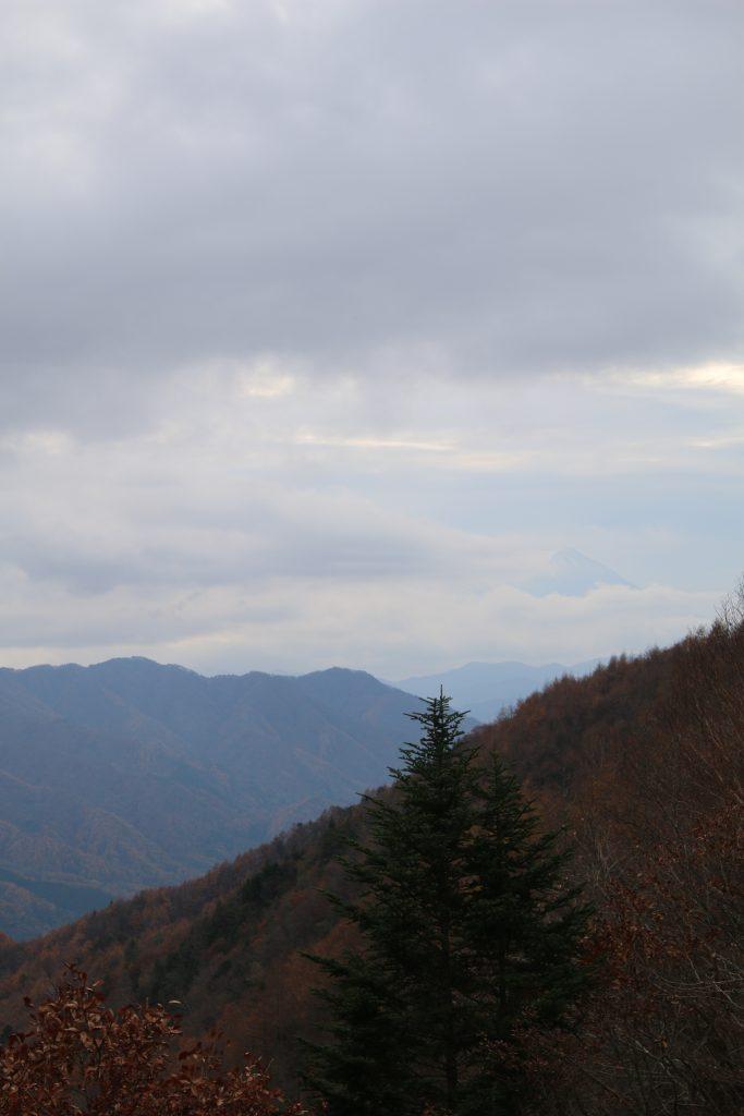 柳沢峠から見る富士山ーちょびっと(2020年11月)