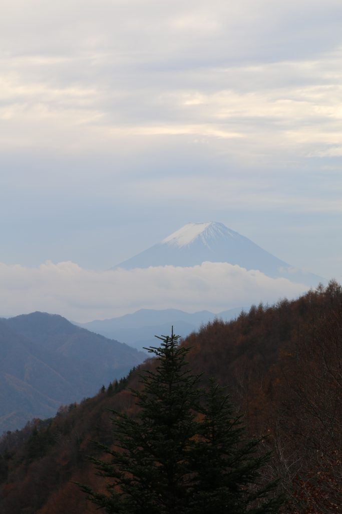 柳沢峠から見る富士山(2020年11月)