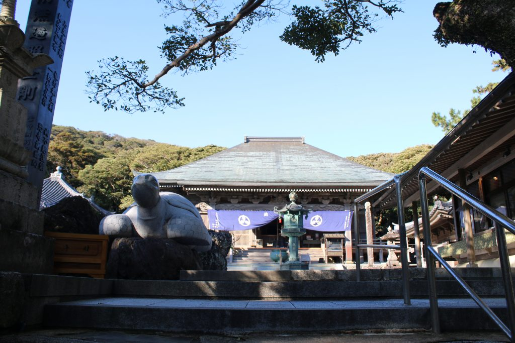 金剛福寺の亀と本堂(2020年12月)