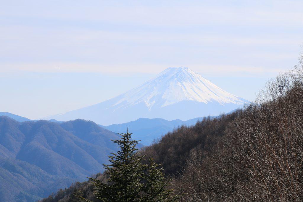 柳沢峠からみる富士山アップ(2021年2月)