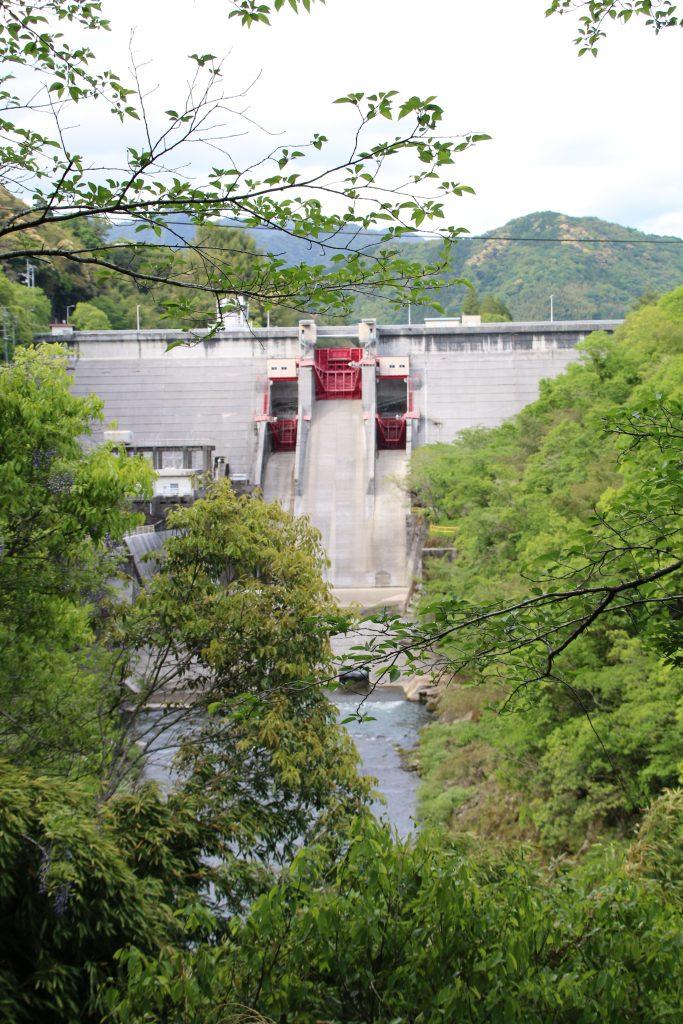 鏡ダムの堤体を下流側から望む(2021年5月5日)