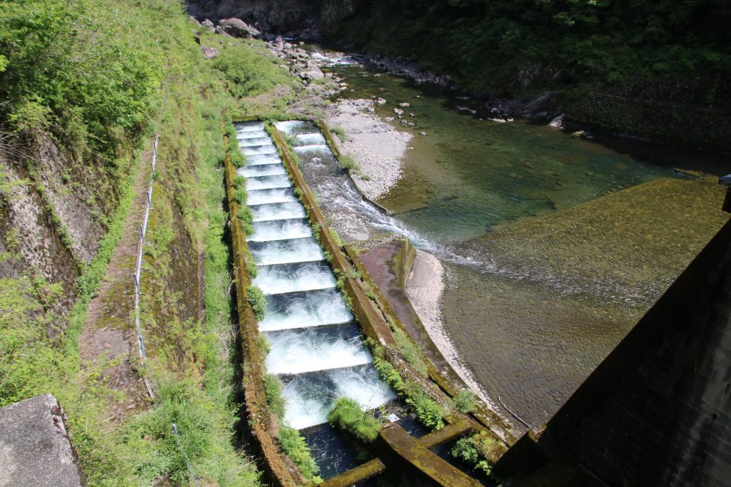 加枝ダムの魚道(2021年5月)