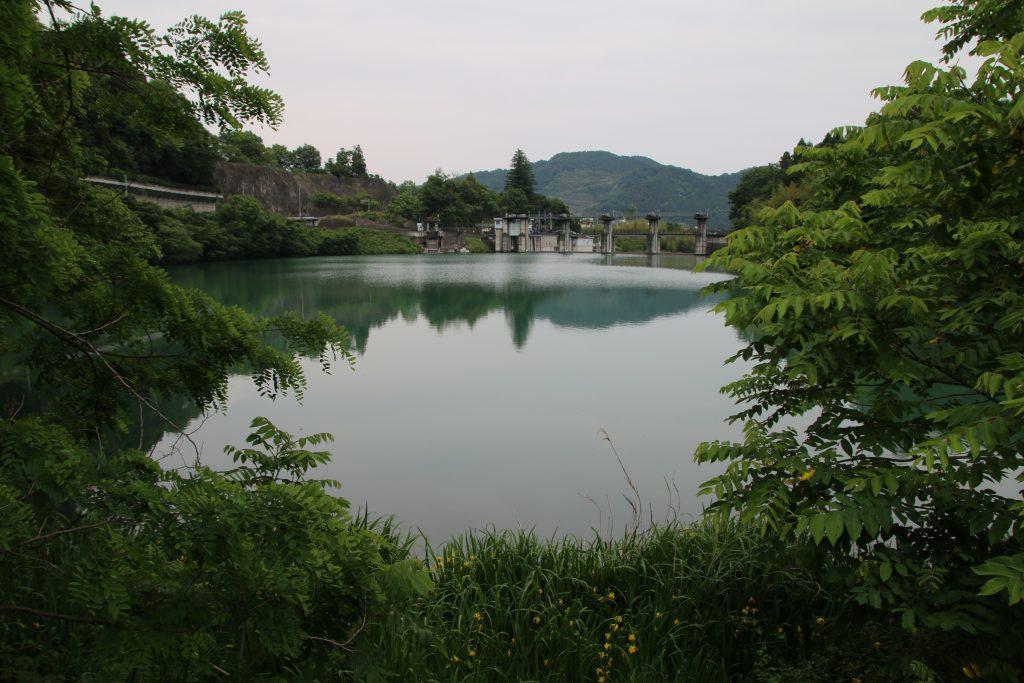 神水湖とキショウブ(2021年5月)