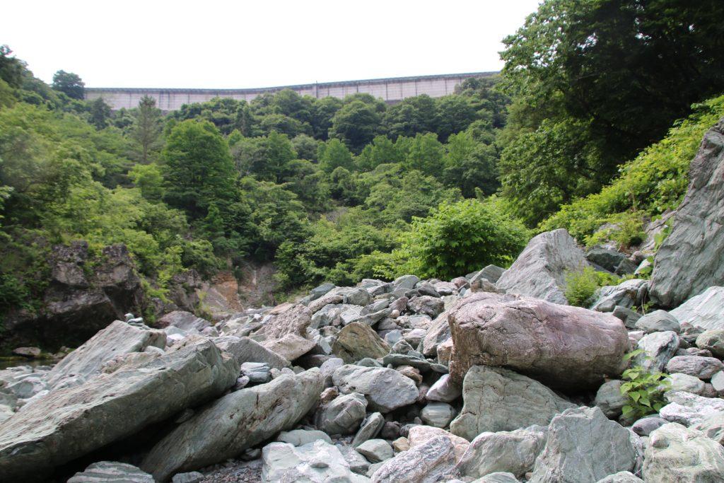 三波石の写真(2021年5月)
