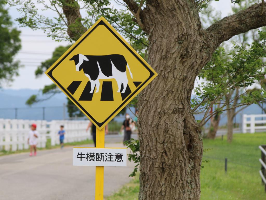 牛横断注意の標識(2021年6月)