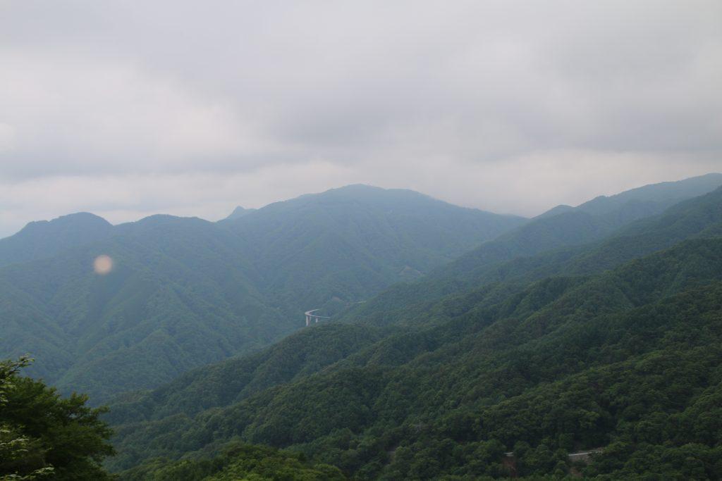 大菩薩初鹿野線から高芝山方面を望む(2021年6月)
