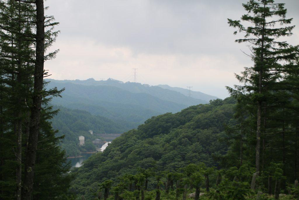 大菩薩初鹿野線から大菩薩湖を望む(2021年6月)